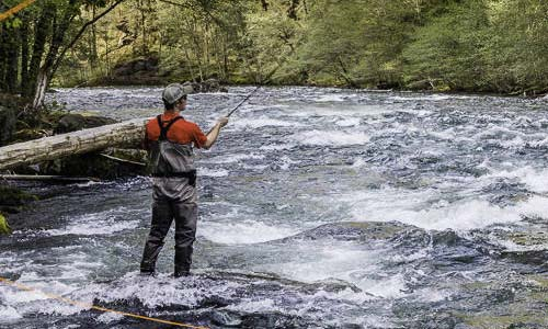 Success on the North Umpqua River