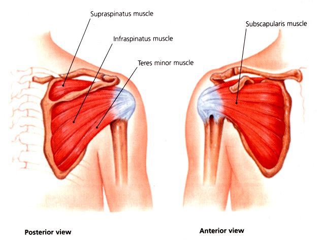 Preventing Shoulder Injuries at NRS.com